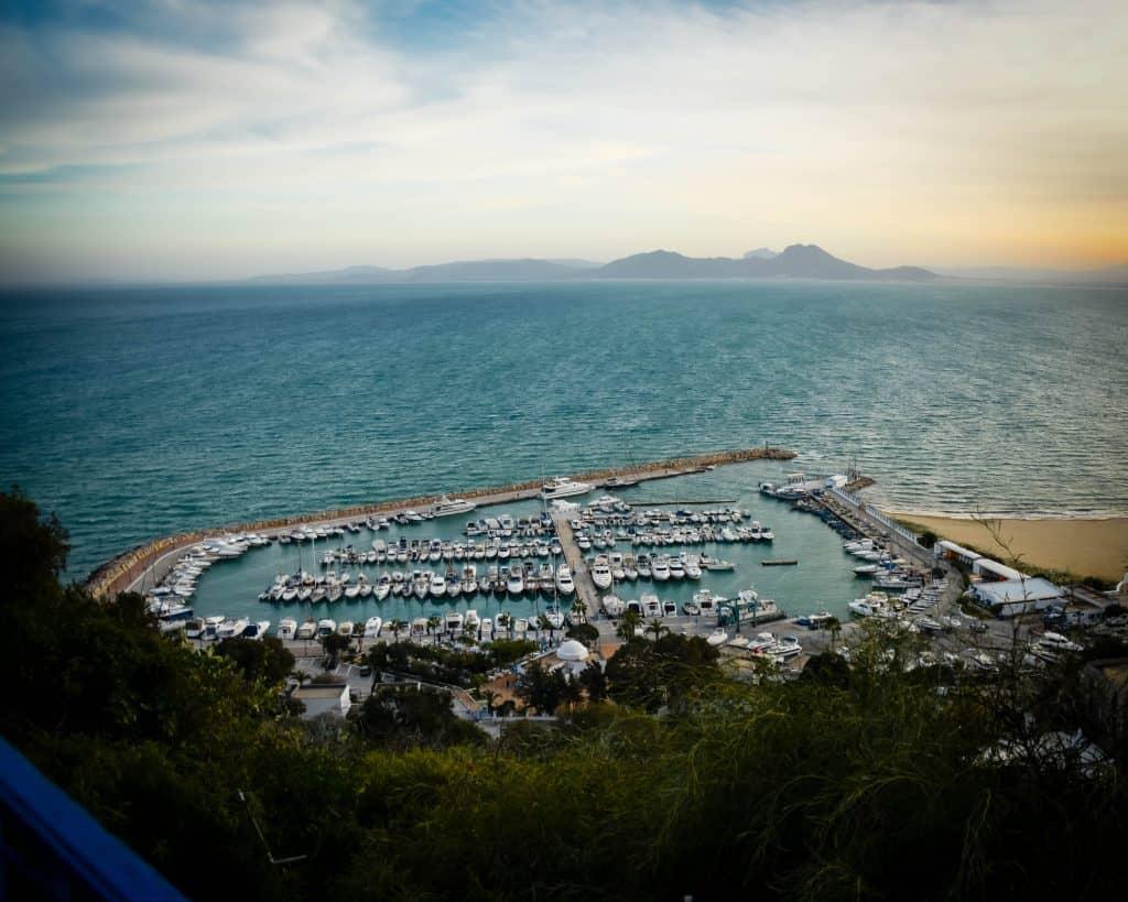 Sidi Bou Said's Harbor