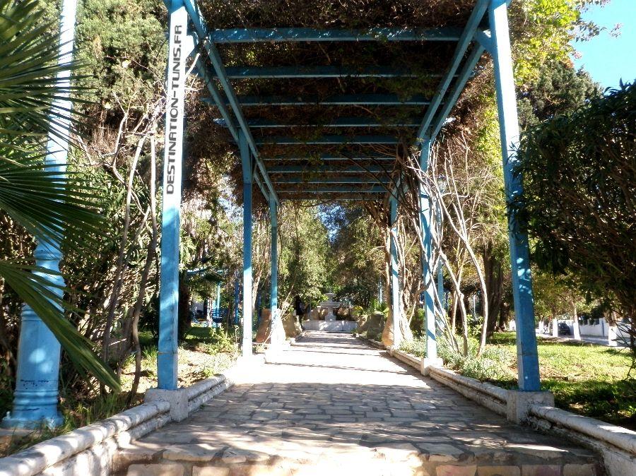 The Mediterranean Garden of Sidi Bou Said