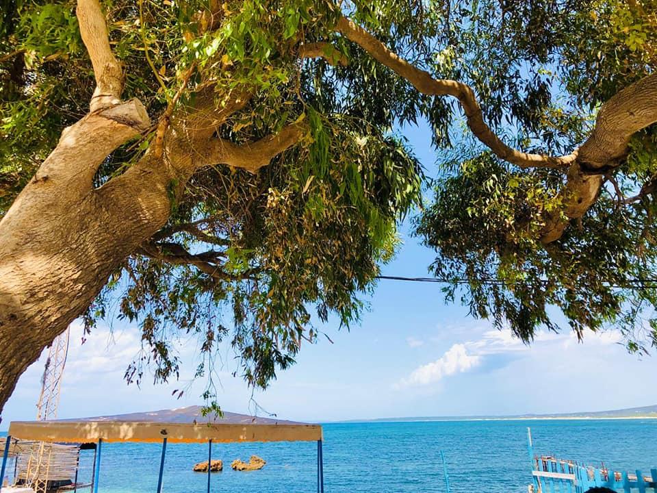Port aux Princes