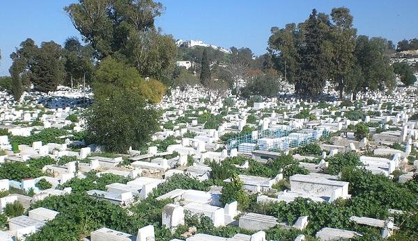 Witchcraft in Tunisian culture