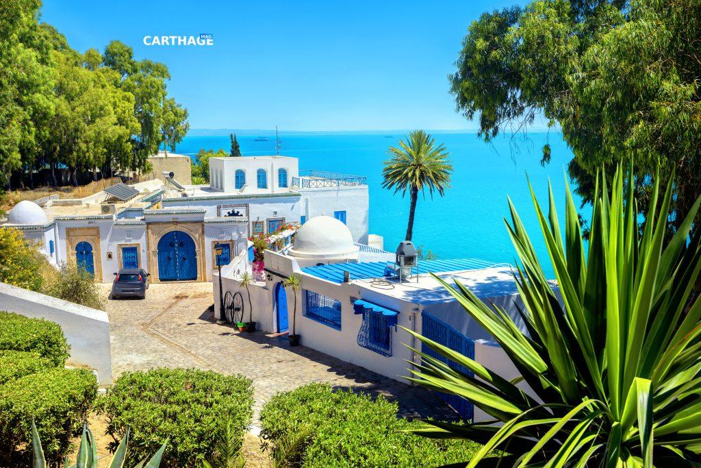 View of seaside resort Sidi Bou Said. Tunisia.