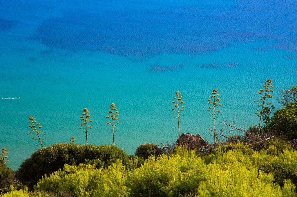 The Galite Islands of Tunisia