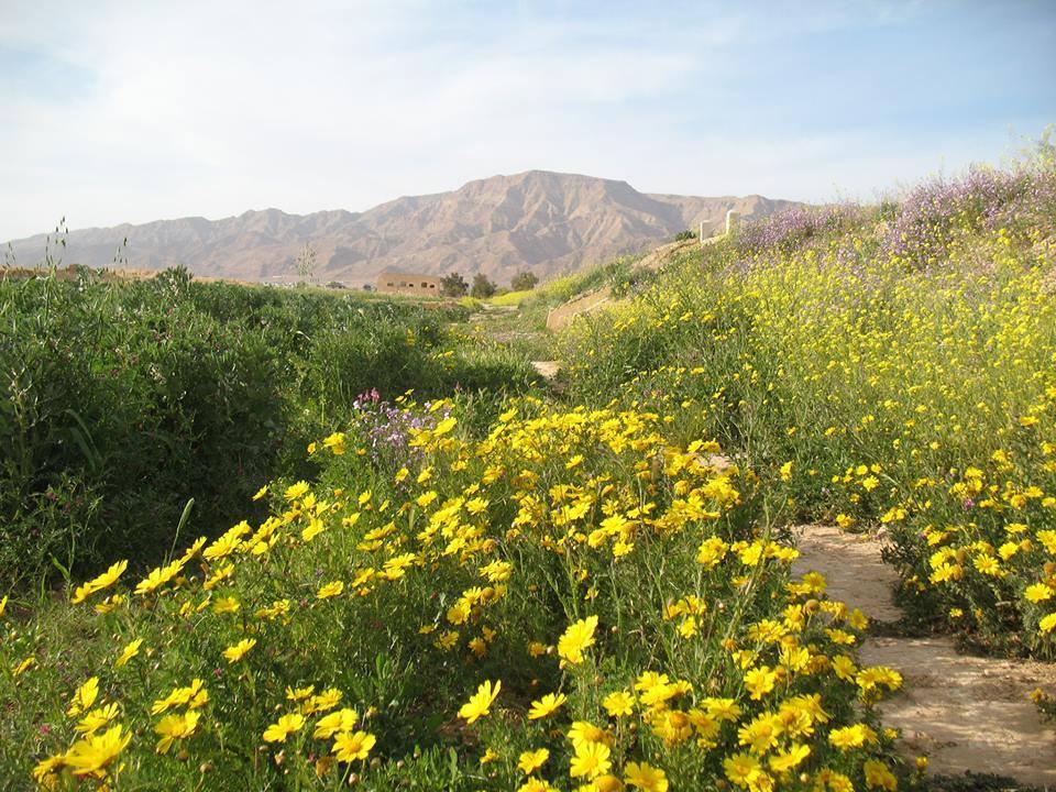 Orbata National Park