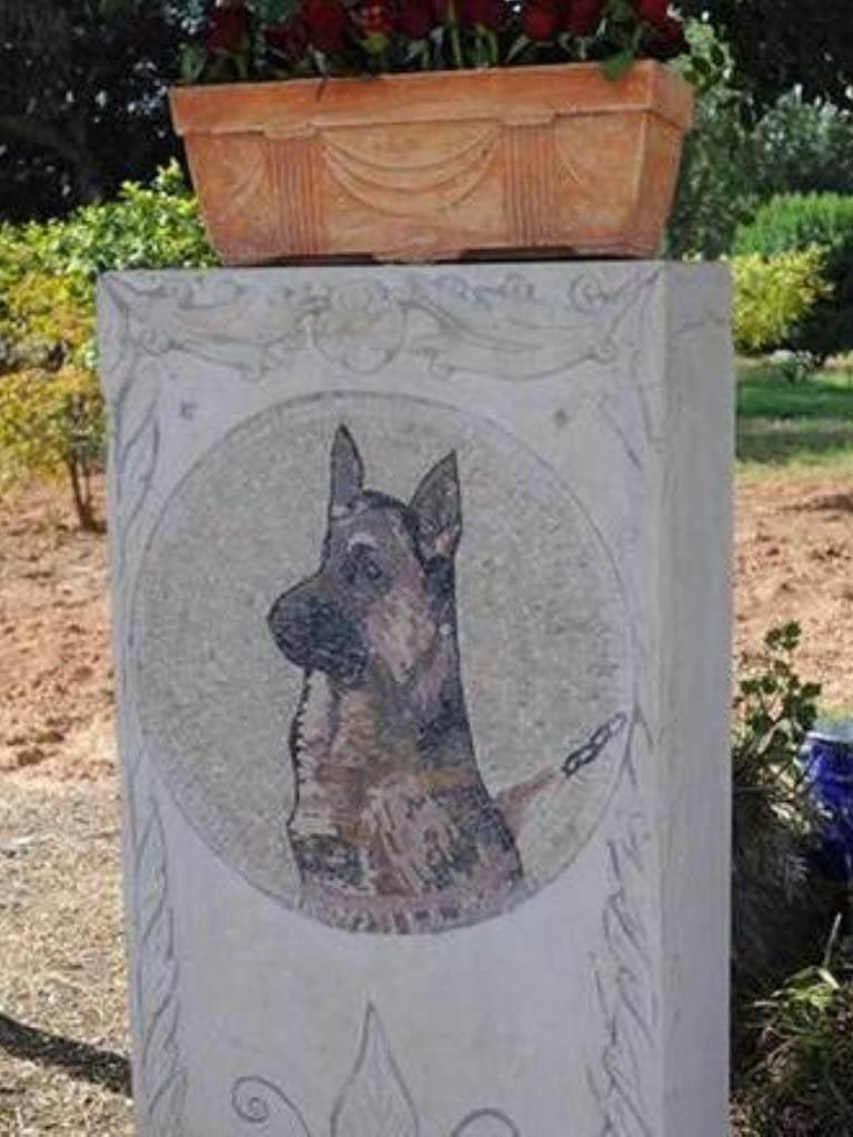 Akil the German Shepherd, killed by terrorists, hailed a hero.