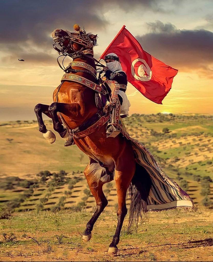 A man holding the Tunisian flag.
