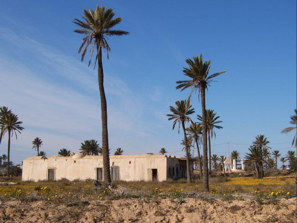 Mahboubin, Djerba.